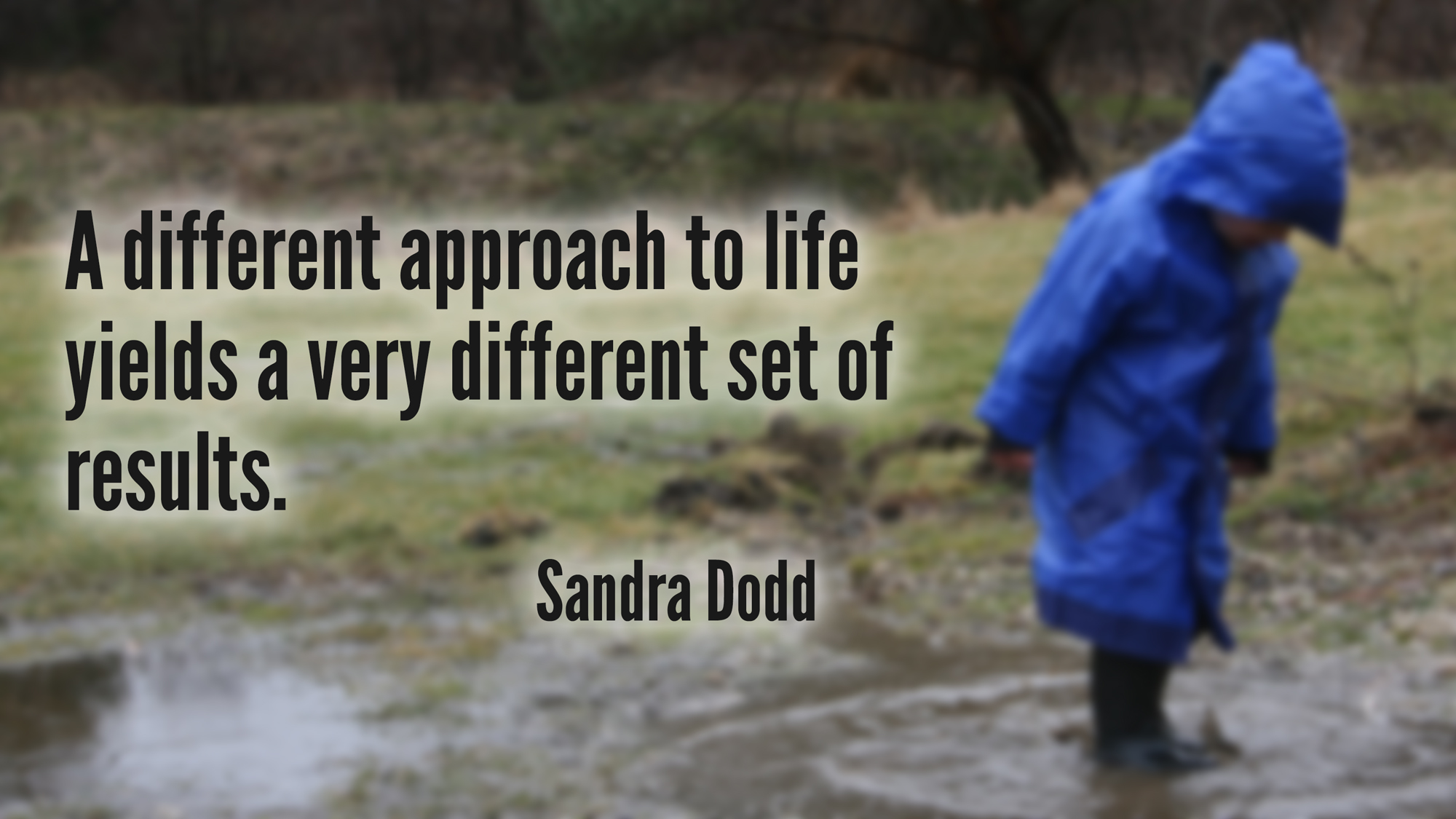 A different approach to life yields a very different set of results. —Sandra Dodd
